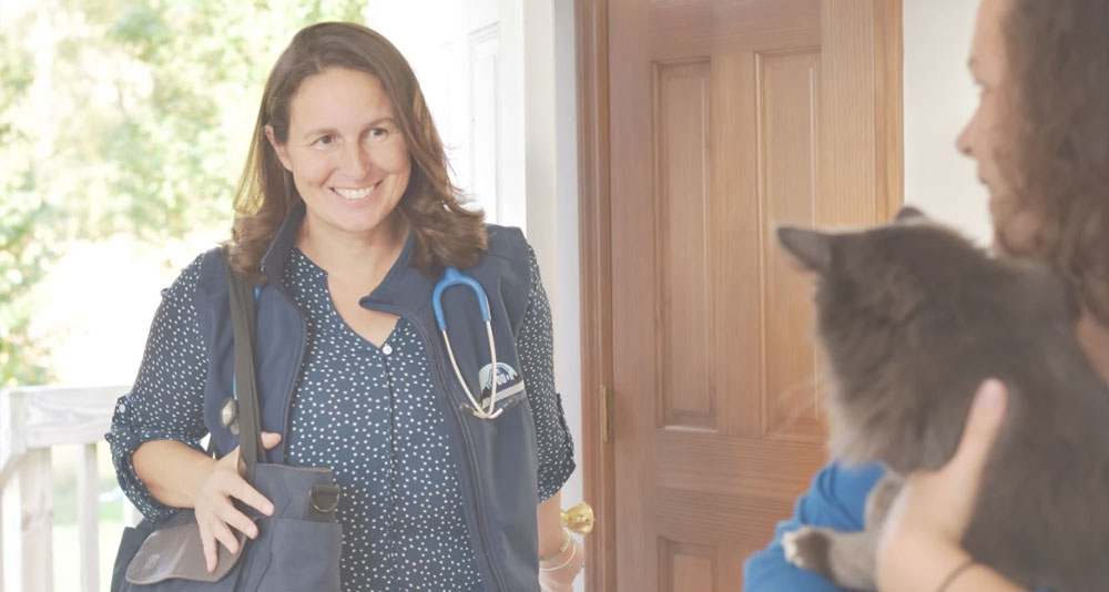 Dr. Annette Otis offers compassionate end of life veterinary care for Central New York
